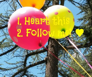 heart, inspiration, and follow me image