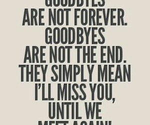 quote, goodbye, and beautiful image