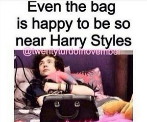 Harry Styles, one direction, and bag image