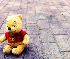photography, pooh, and winnie the pooh image