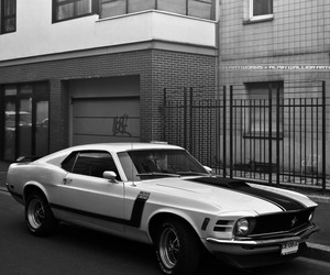 cars, muscle cars, and oldtimer image
