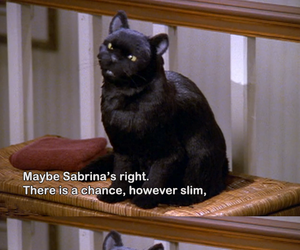 salem and quotes image