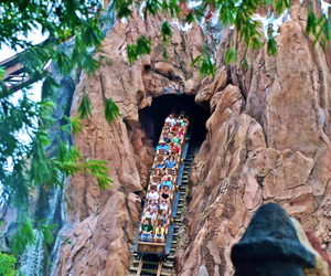 Animal kingdom, disney world, and fun image