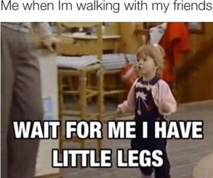 funny, legs, and friends image