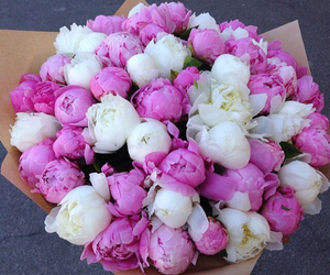 peonies, flowers, and bouquet image