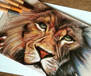 art, drawing, and lion image