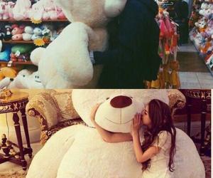 animal, bear, and couple image