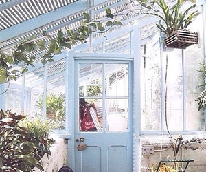 plants, blue, and aesthetic image