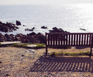 alone, nature, and bench image