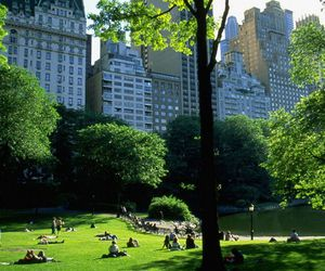 city, beautiful, and Central Park image