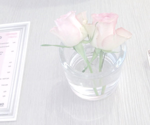pale and pink image