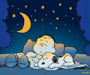 charlie brown, Noche, and snoopy image