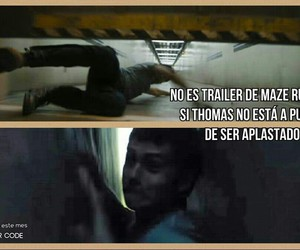 thomas, yolo, and scorch trials image