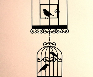 bird cage, birds, and wall decal image