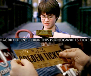 harry potter, golden ticket, and funny image