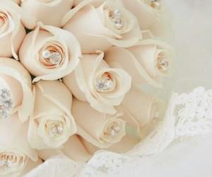 rose, wedding, and bridal image