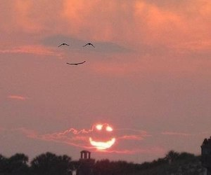 nature, улыбка, and smile image