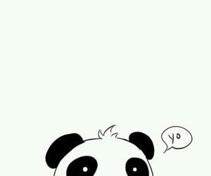 panda, cute, and yo image