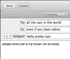 cat, lonely, and email image