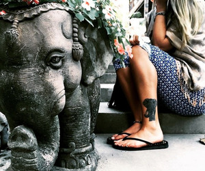 elephant, tattoo, and indie image