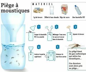 eau, piège, and moustique image