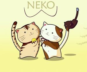 anime cats neko image