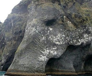 elephant, nature, and rock image
