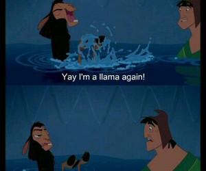 disney, funny, and llama image
