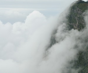 nature, fog, and clouds image