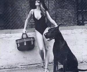dog, black, and girl image