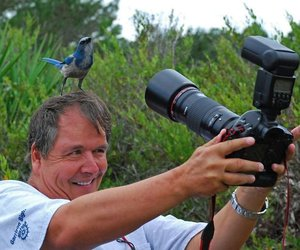photography, bird, and photographer image