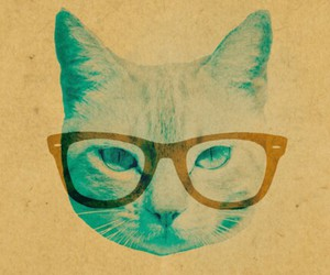 glasses, brown, and cat image