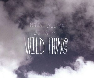 wild, quote, and Wild Thing image