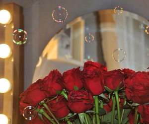 flowers, roses, and تصوير image