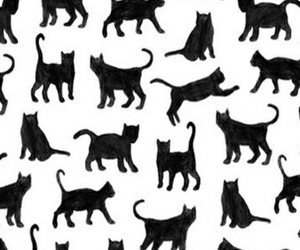 wallpaper, cat, and love image