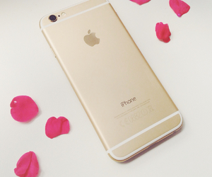 apple, flowers, and gold image