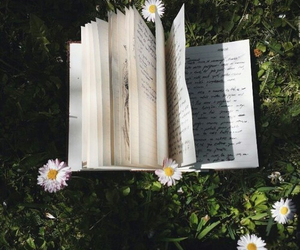book, flowers, and grass image