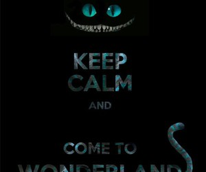 wonderland, keep calm, and cat image