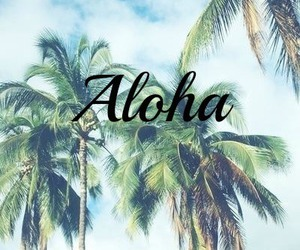 Aloha, summer, and palm trees image