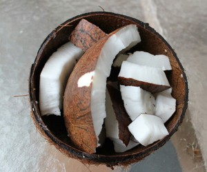 coconut, food, and summer image