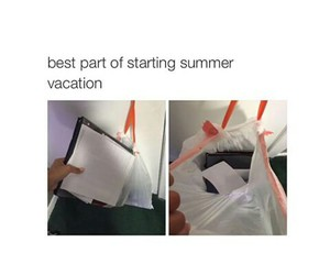 funny, lol, and summer image