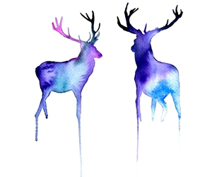 Animales, colores, and drawings image