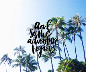 adventure, hawaii, and palm trees image