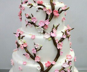 cake, cherry blossom, and pink image