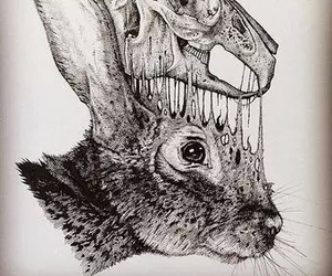 rabbit, art, and draw image