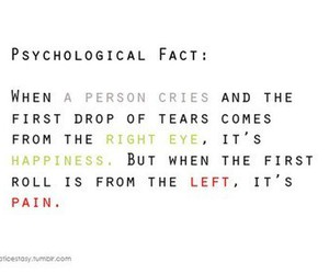 cry, fact, and tears image
