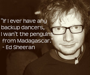 ed sheeran, quote, and penguin image