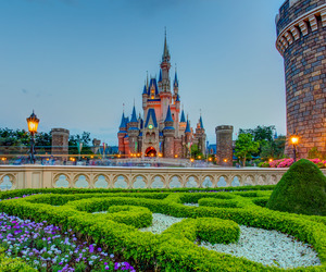 beautiful, garden, and disney world image