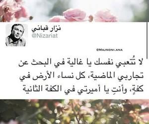 Image by Qamar Raad