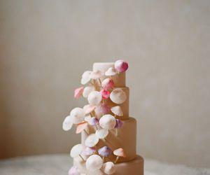 cake and mushroom image